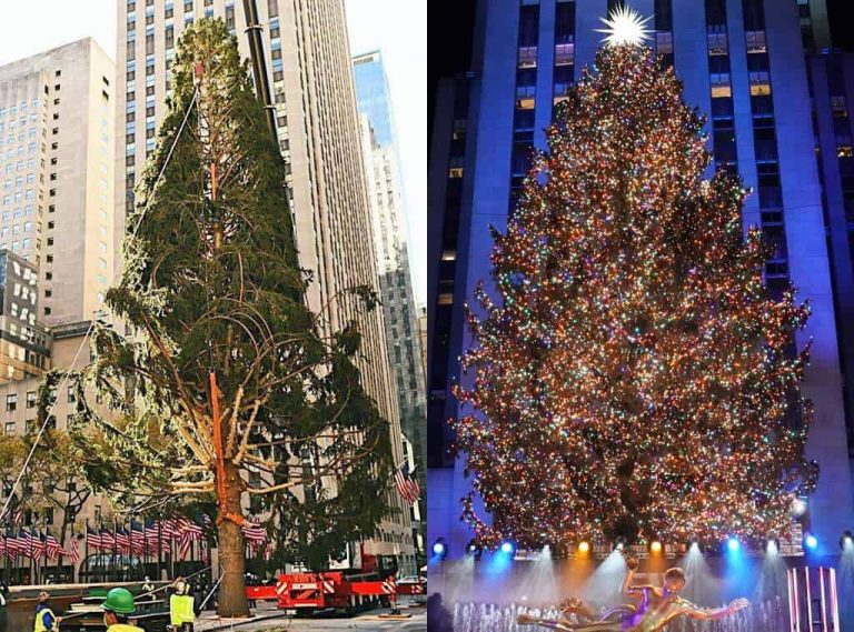 Rockefeller Christmas Tree Finally Gets The Much Needed Touch-up For The Upcoming Christmas